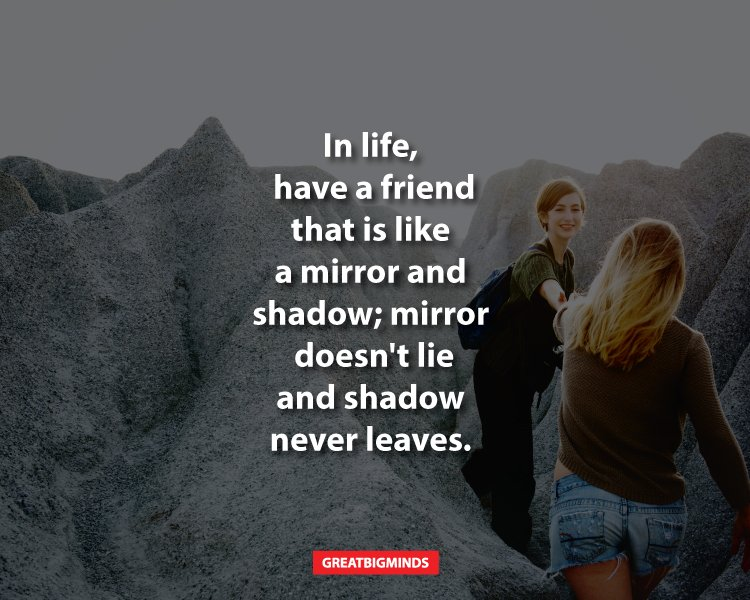 10 best friend quotes to rejoice your magnificent relationship