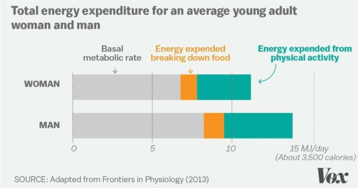A good diet energy expenditure