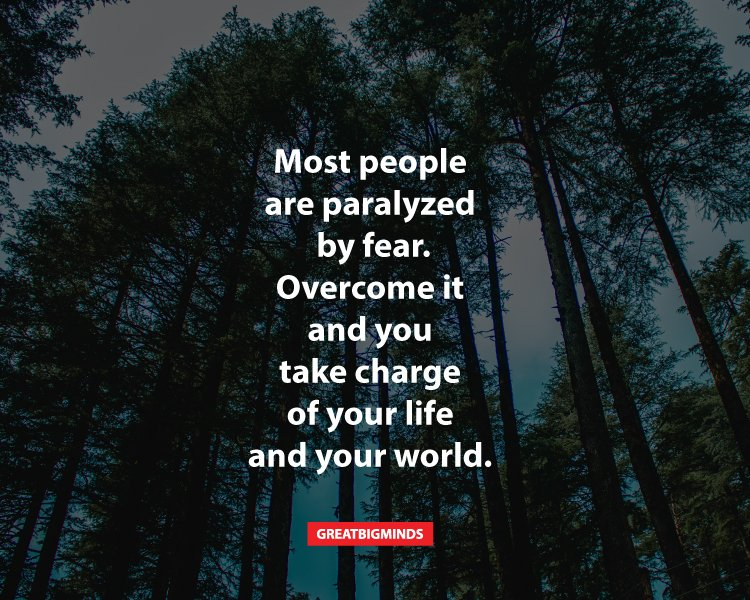 Most people are paralyzed by fear. Overcome it and you take charge of your life and your world.