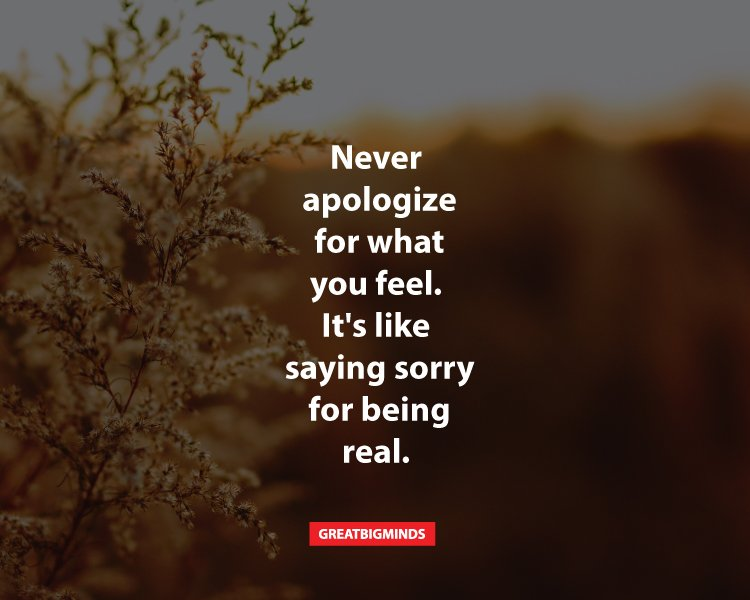 11-things-that-you-shouldn't-apologize-for-2