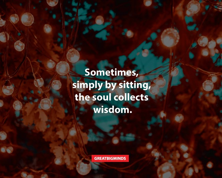25-Zen-quotes-from-Shunryu-Suzuki-that-will-make-you-rethink-everything-2
